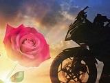 Une rose, un espoir - Des motards contre le cancer.