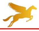 Pegasus (Bangladesh)