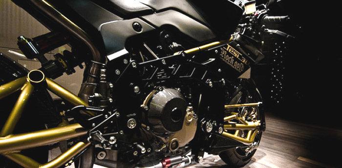 Bimota 1100 TESI 3D ROCK GOLD 2009 - 3
