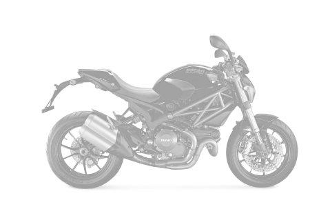 Ducati 1100 MONSTER evo