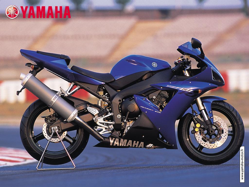 1000 yzf r1 2002 2003 sportives galeries photos for 01 yamaha r1