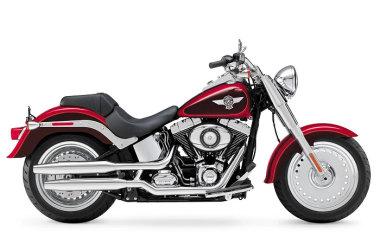 Harley-Davidson 1690 SOFTAIL FAT BOY FLSTF 2013