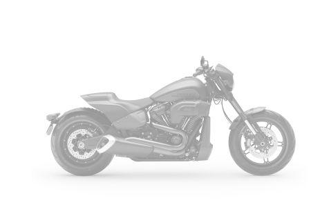 Harley-Davidson 1870 SOFTAIL FXDR