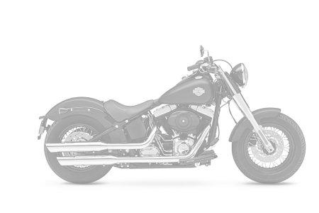 Harley-Davidson 1745 SOFTAIL SLIM FLSL