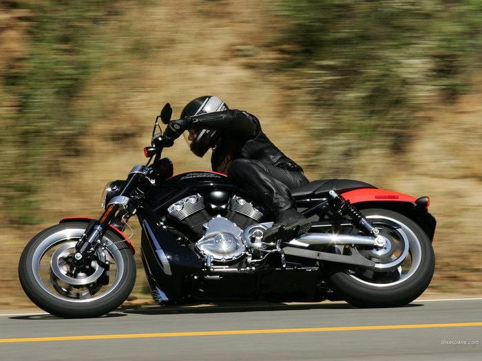 Harley-Davidson 1130 STREET-ROD VRSCR 2005 - 1