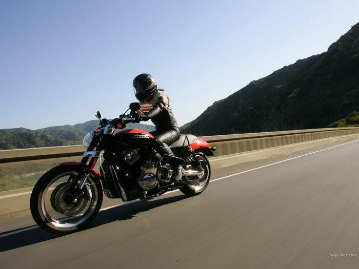 Harley-Davidson 1130 STREET-ROD VRSCR 2005 - 21