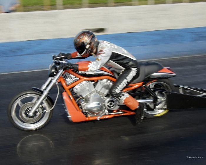 Harley-Davidson 1300 V-ROD DESTROYER VRXSE 2006 - 5