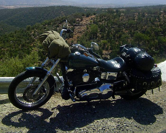 Harley-Davidson 1450 DYNA LOW RIDER edition HOGGER 2001 - 3