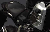 Honda CB 600 F HORNET R