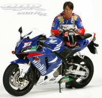 Honda CBR 600 RR Replica WIN WIN Sébastien Charpentier