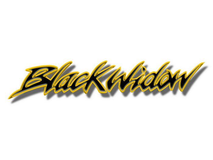 Honda VT 750 DC Black Widow 2000 - 4