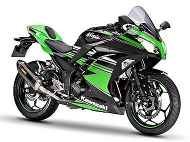 Kawasaki Ninja 300 KRT Performance