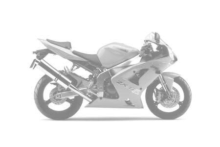 Kawasaki ZX-6RR 600