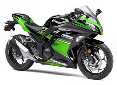 Kawasaki Ninja 300 R KRT Edition