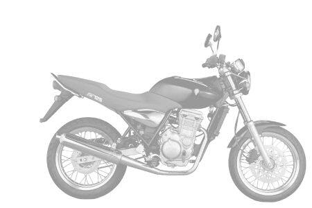 MZ (MuZ) 125 RT