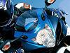 Suzuki vous invite à essayer ses quatre modèles phares pendant le Bol d'Or.