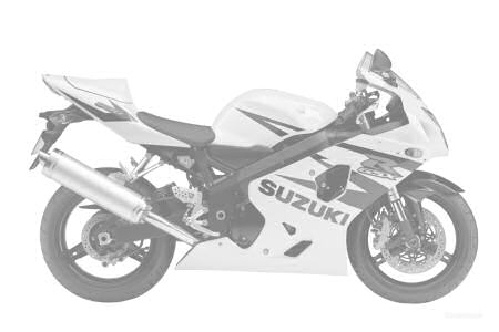 Suzuki 600 GSX-R