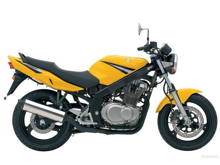 Suzuki 500 GS 2003 - 8