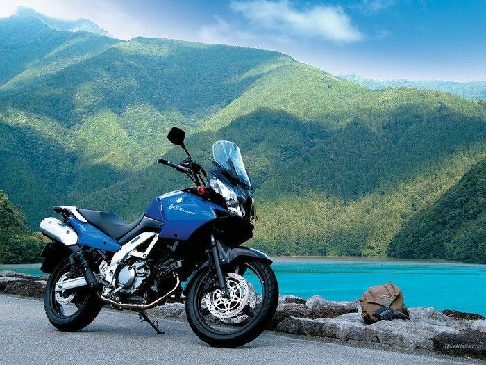 Suzuki DL 650 V-STROM 2003 - 5