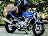 moto Suzuki GSF 650 Bandit N et S 2008
