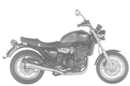 Triumph 900 LEGEND TT
