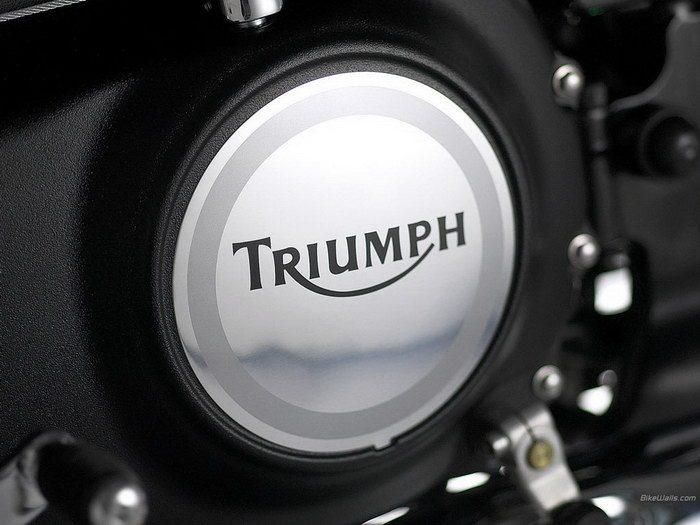 Triumph 800 BONNEVILLE AMERICA 2001 - 29