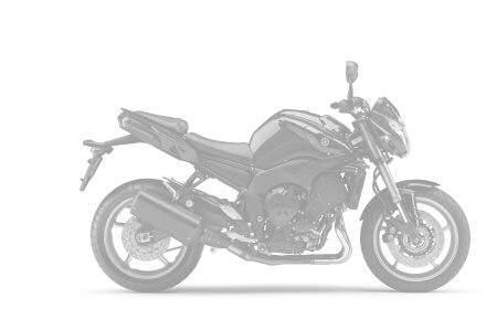 Yamaha 800 FZ8