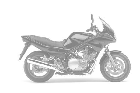 Yamaha XJS 900 Diversion