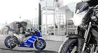Yamaha 800 FZ8 Race Blu